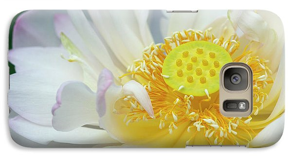 Galaxy Case featuring the photograph Sacred Lotus Flower by Tim Gainey
