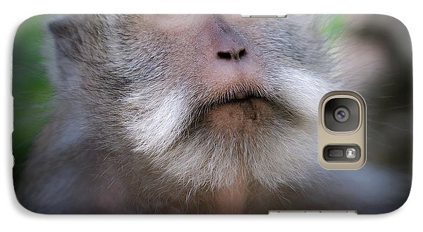 Dragon Galaxy S7 Case - Sacred Monkey Forest Sanctuary by Larry Marshall