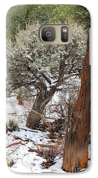 Galaxy Case featuring the photograph Sage Bush Grand Canyon by Donna Greene