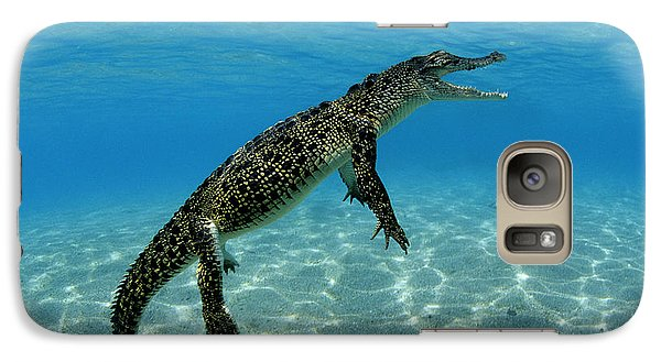 Saltwater Crocodile Galaxy S7 Case by Franco Banfi and Photo Researchers