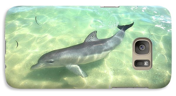 Galaxy Case featuring the photograph Samu 1 , Monkey Mia, Shark Bay by Dave Catley