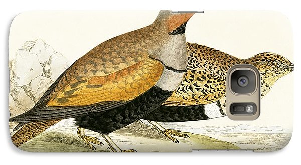 Sand Grouse Galaxy Case by English School