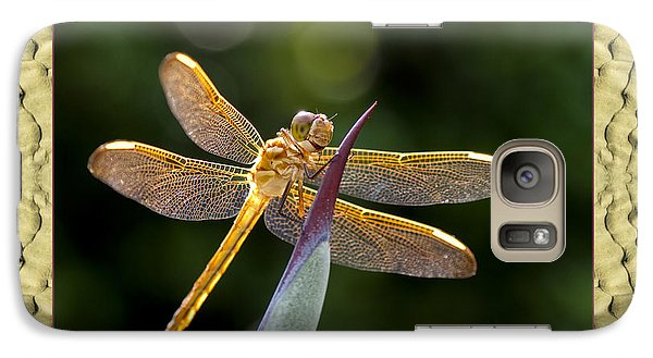 Galaxy Case featuring the photograph Sandflow Dragonfly by Bell And Todd