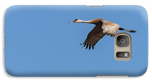 Galaxy Case featuring the photograph Sandhill Crane 2017-1 by Thomas Young