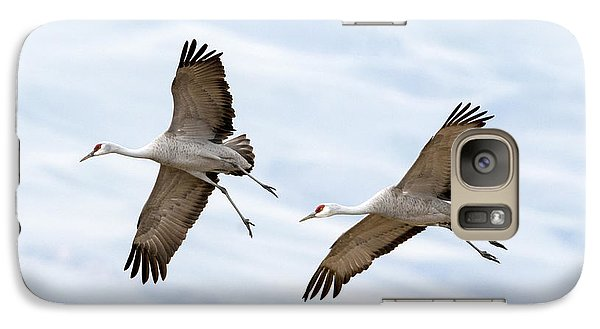 Sandhill Crane Approach Galaxy S7 Case