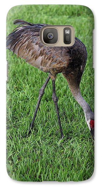 Galaxy Case featuring the photograph Sandhill Crane II by Richard Rizzo