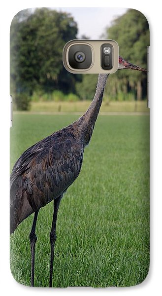 Galaxy Case featuring the photograph Sandhill Crane by Richard Rizzo