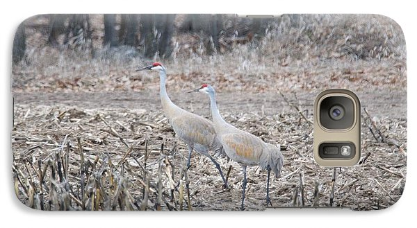 Galaxy Case featuring the photograph Sandhill Cranes 1171 by Michael Peychich
