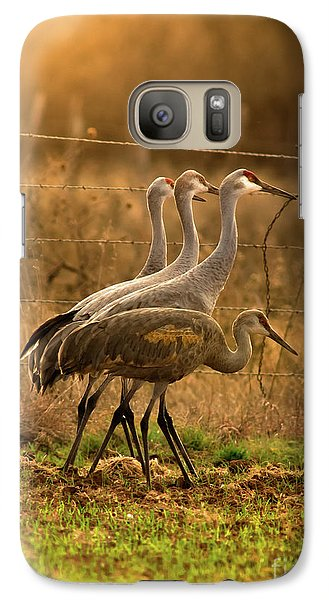 Galaxy Case featuring the photograph Sandhill Cranes Texas Fence-line by Robert Frederick
