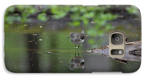 Galaxy Case featuring the photograph Sandpiper In The Smokies by Douglas Stucky