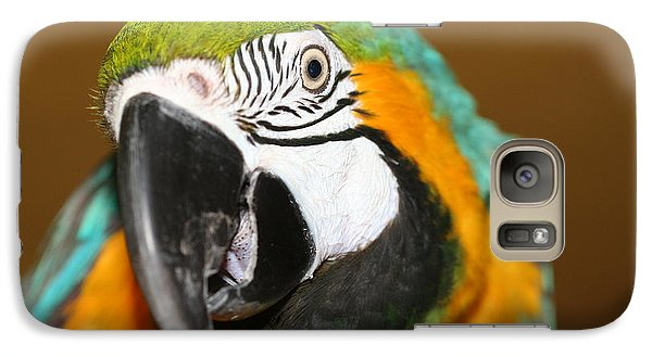 Galaxy Case featuring the photograph Sassy Blue And Gold Macaw by Diane Merkle