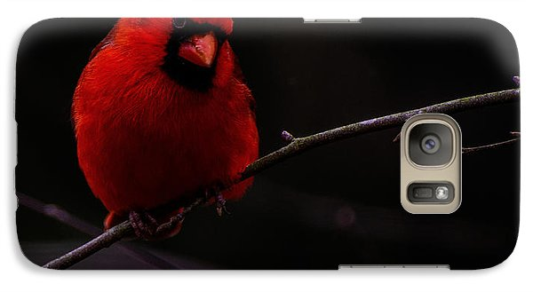 Galaxy Case featuring the photograph Scene Stealer  by John Harding
