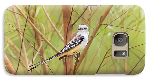 Galaxy Case featuring the photograph Scissortail In Scrub by Robert Frederick