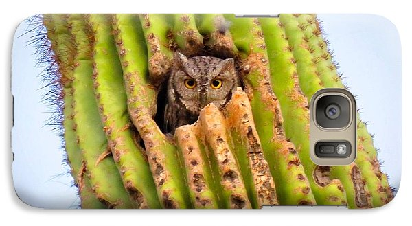 Screech Owl In Saguaro Galaxy S7 Case