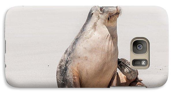 Sea Lion 1 Galaxy S7 Case by Werner Padarin