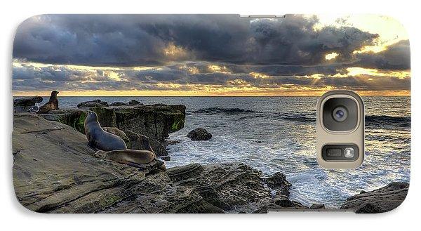 Galaxy Case featuring the photograph Sea Lions At Sunset by Eddie Yerkish