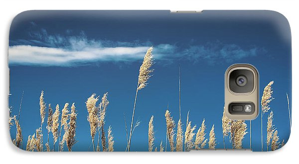 Galaxy Case featuring the photograph Sea Oats On A Blue Day by Colleen Kammerer