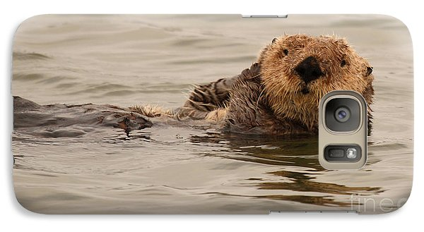 Galaxy Case featuring the photograph Sea Otter All Cuddled Up by Max Allen