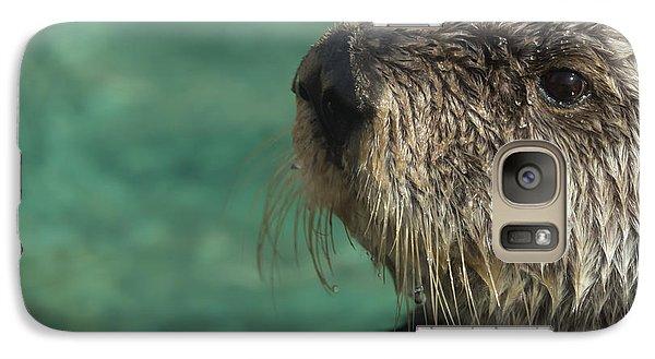 Sea Otter Stare Down Galaxy S7 Case