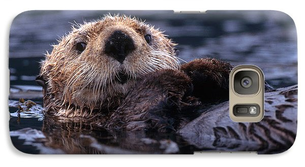 Sea Otter Galaxy S7 Case by Yva Momatiuk and John Eastcott and Photo Researchers