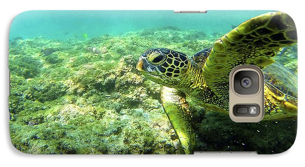 Galaxy Case featuring the photograph Sea Turtle #2 by Anthony Jones