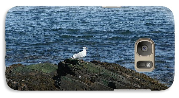 Galaxy Case featuring the digital art Seagull On The Rocks by Barbara S Nickerson