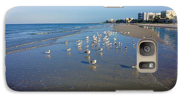 Galaxy Case featuring the photograph Seagulls And Terns On The Beach In Naples, Fl by Robb Stan