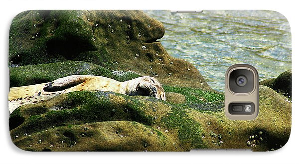 Galaxy Case featuring the photograph Seal On The Rocks by Anthony Jones
