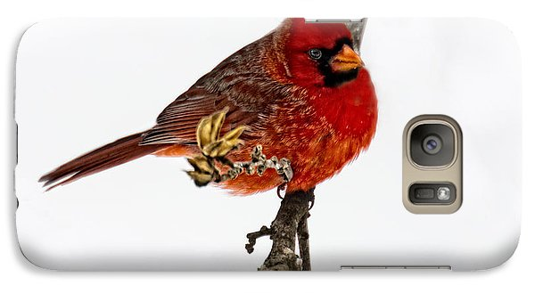 Galaxy Case featuring the photograph Second Cardinal by Skip Tribby