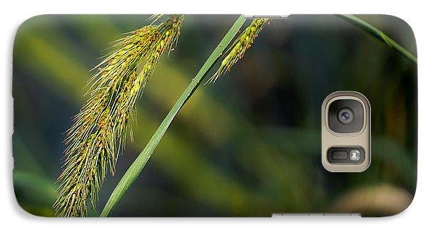 Galaxy Case featuring the photograph Seeds by Allen Biedrzycki