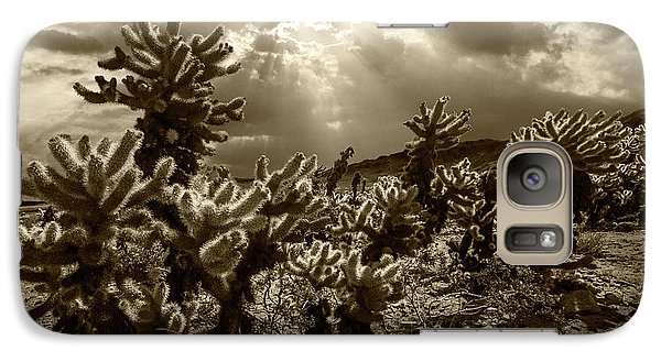 Galaxy Case featuring the photograph Sepia Tone Of Cholla Cactus Garden Bathed In Sunlight by Randall Nyhof