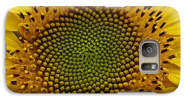 Galaxy Case featuring the photograph September Sunflower by Richard Cummings