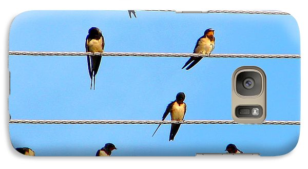 Galaxy Case featuring the photograph Seven Swallows by Ana Maria Edulescu