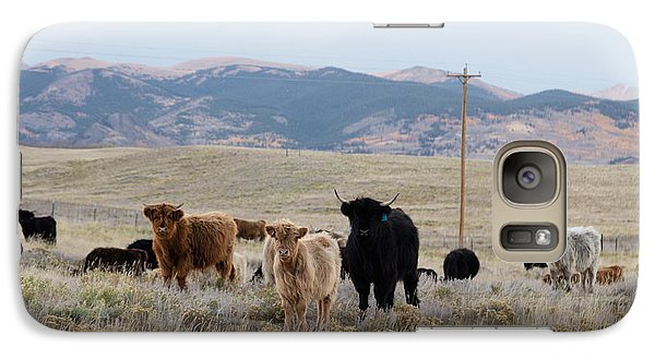 Galaxy Case featuring the photograph Shaggy-coated Cattle Near Jefferson by Carol M Highsmith