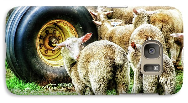 Galaxy Case featuring the photograph Sheep Guards by Toni Hopper