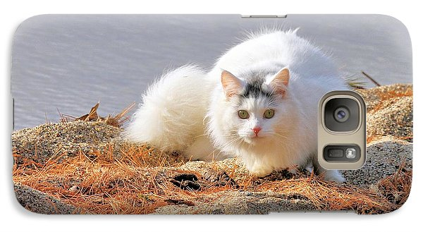 Shore Kitty Galaxy S7 Case