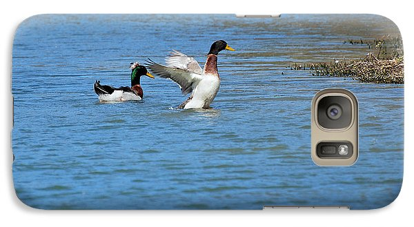 Galaxy Case featuring the photograph Showing Off by Teresa Blanton