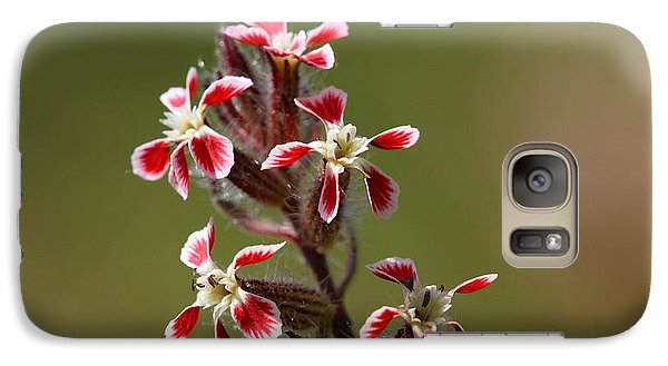 Galaxy Case featuring the photograph Silene by Richard Patmore