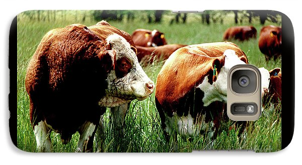 Galaxy Case featuring the photograph Simmental Bull And Hereford Cow by Larry Campbell