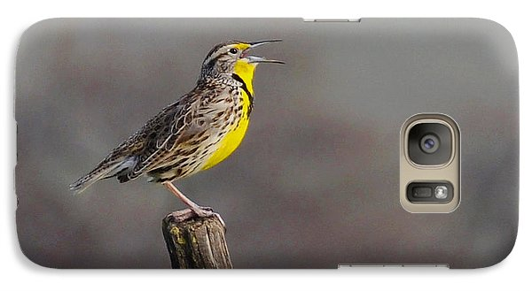 Galaxy Case featuring the photograph Singing Warbler by Debby Pueschel