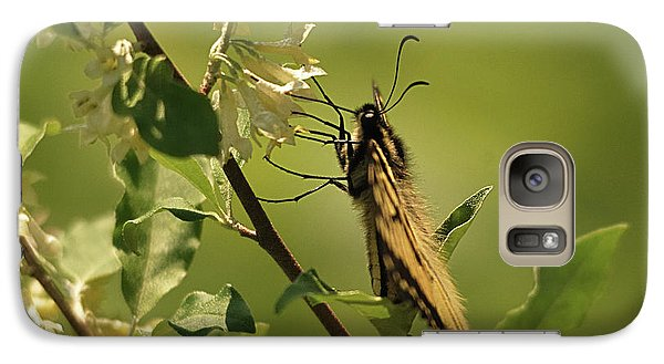 Galaxy Case featuring the photograph Sipping In The Shade by Susan Capuano