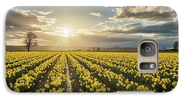 Galaxy Case featuring the photograph Skagit Daffodils Bright Sunstar Dusk by Mike Reid
