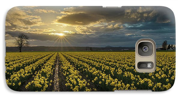 Galaxy Case featuring the photograph Skagit Daffodils Golden Sunstar Evening by Mike Reid