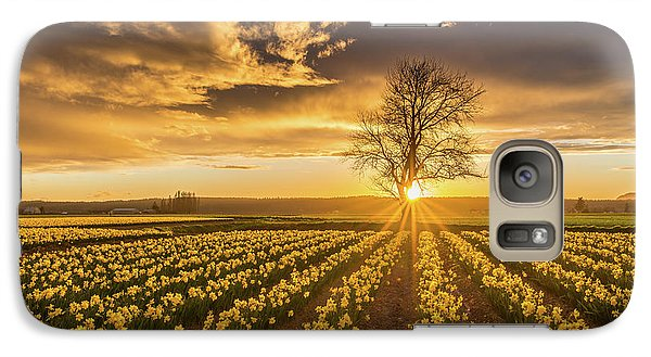 Galaxy Case featuring the photograph Skagit Valley Daffodils Sunset by Mike Reid