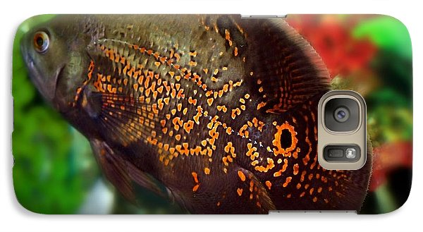 Galaxy Case featuring the photograph Skeeter by Betty Northcutt