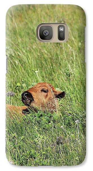Galaxy Case featuring the photograph Sleepy Calf by Alyce Taylor