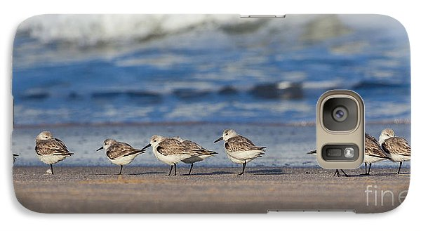 Galaxy Case featuring the photograph Sleepy Shorebirds by Michelle Wiarda