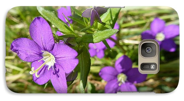 Galaxy Case featuring the photograph Small Mauve Flowers by Jean Bernard Roussilhe