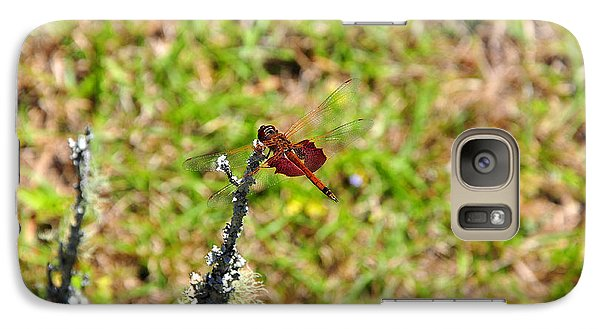 Galaxy Case featuring the photograph Shimmering Saddlebags by Al Powell Photography USA