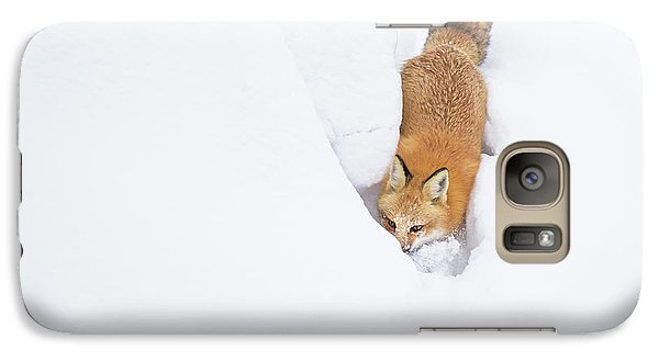 Galaxy Case featuring the photograph Snow-diving Fox  by Mircea Costina Photography